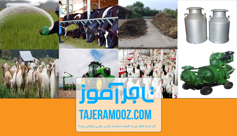 ایجاد شغل در روستا